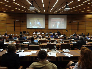 4th UNCAC IRG Briefing for NGOs at UN Vienna